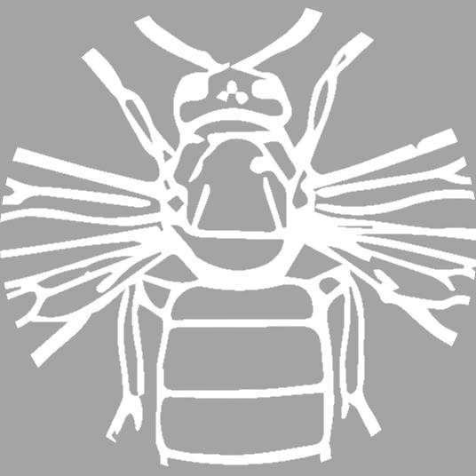 Signs of the Locust